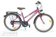 "Fahrad 24"" Ma-Al-ATB R36 T07 U TRAPEZ Clove-pink"