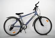 "Jalgratas 26""He-Alu-MTB R40 T21 F Magma-pearl"