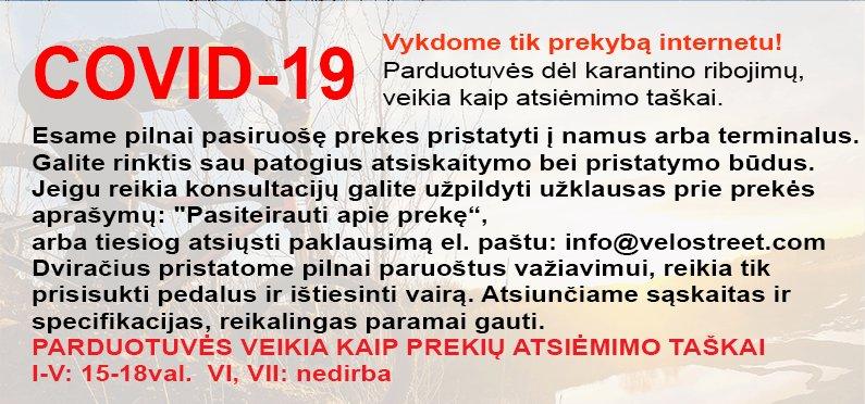 COVID-19 karantinas