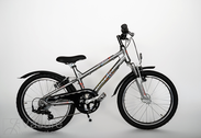 "Jalgratas 20""Kn-Al-ATB R30 E06 F DIRT-FL Lead-metal"