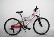 "Bicycle 24""He-St-SUS R38 T21 F D-TYPE Lunar silver/arrant red"