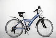 "Bicycle 24""Kn-Al-ATB R36 T21 F BANANA Magma-pearl"