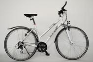 "Fahrrad 28""Da-Al-CRS R50 C24 F DAMEN MOCCASIN Snow-angel"