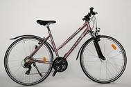 """Fahrrad 28""""Da-Al-CRS R50 T21 F DAMEN MOCCASIN SPORT moonlite-rose"""