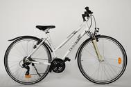 """Fahrrad 28""""Da-Al-CRS R50 T21 F DAMEN MOCCASIN SPORT Snow-angel"""