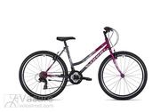 Bicycle Drag Hacker Lady 26 purple dark silver