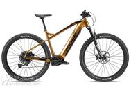 El. dviratis Fuji Ambient Evo 29 1.1 Dark Gold Gloss